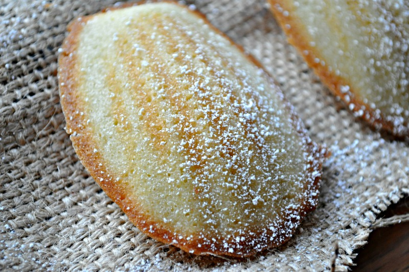 madelines4